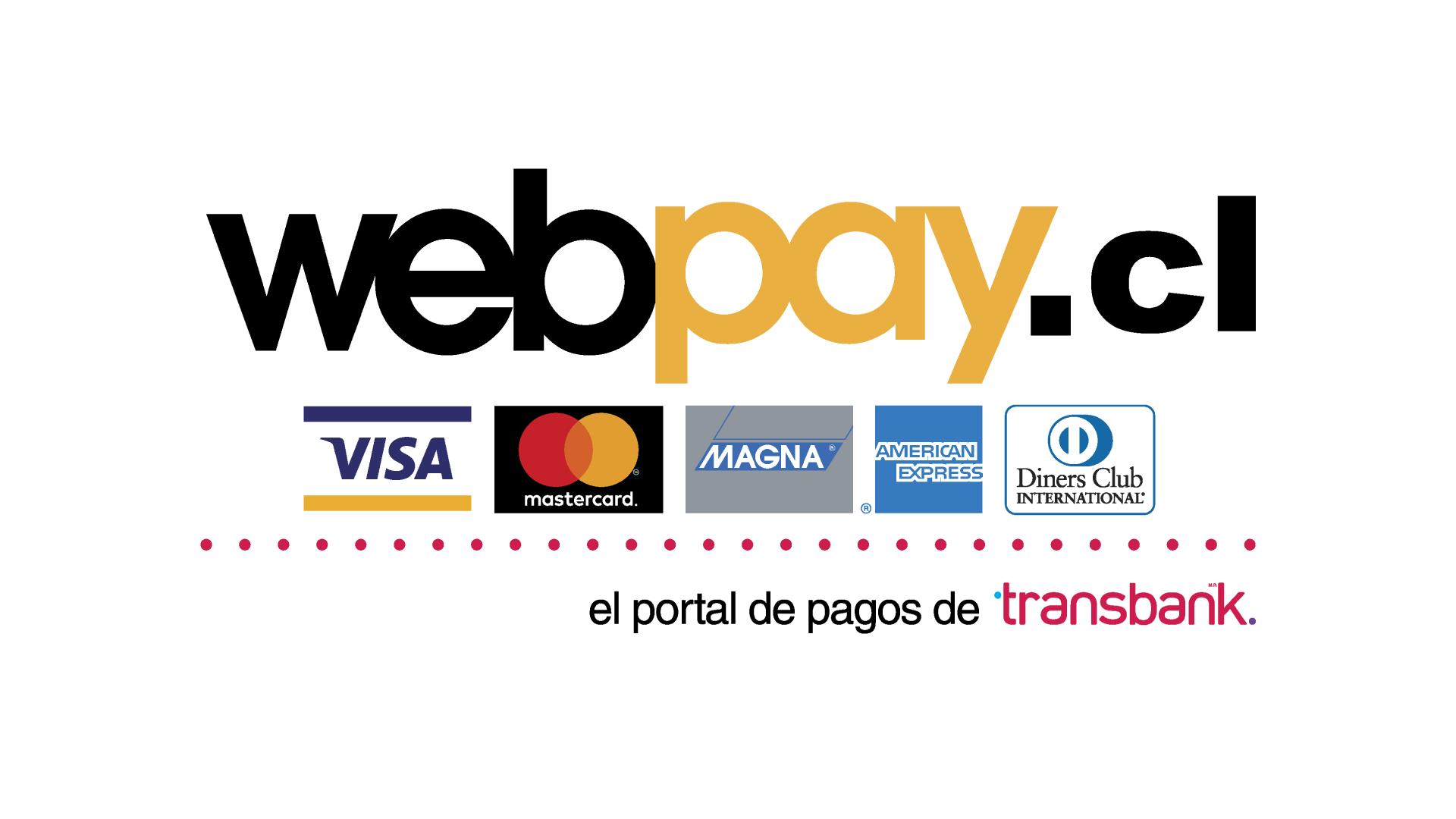 Paga en línea con Webpay | Weber Chile
